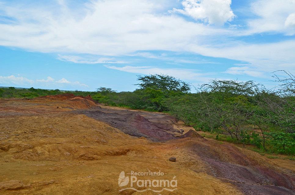La tierra oscura se debe a los restos de minerales.