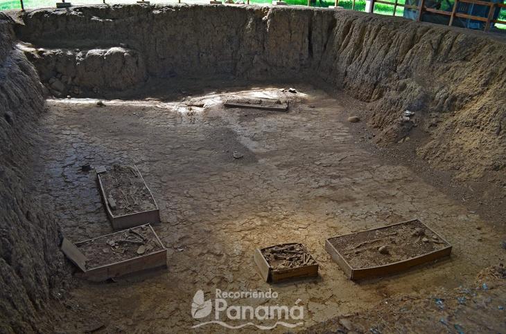 Esqueletos encontrados en la primera tumba excavada.