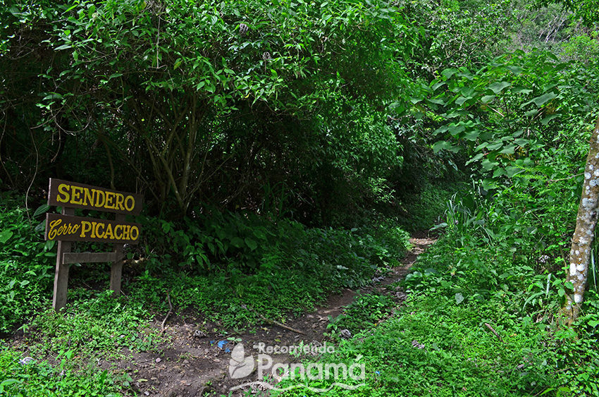 Entrada al Sendero - Cerro Picacho.