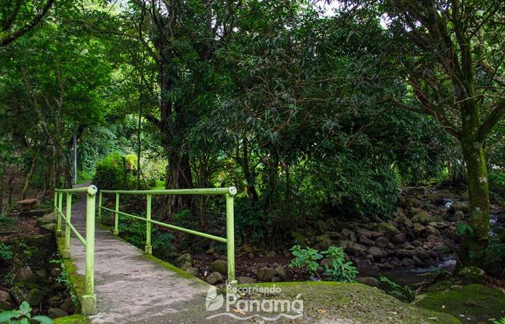 entrada-al-sendero