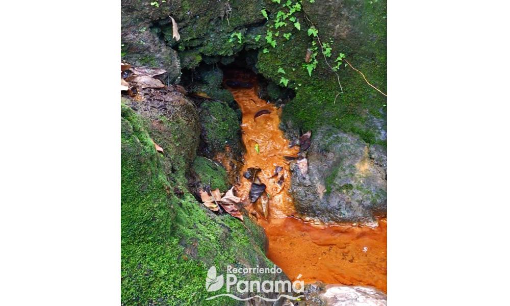 Ojo de agua del Pozo Termal.