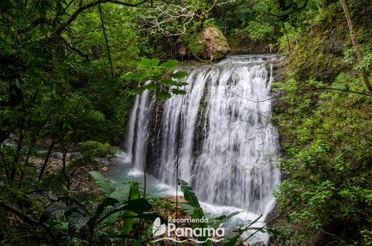 cascada-nativa-3