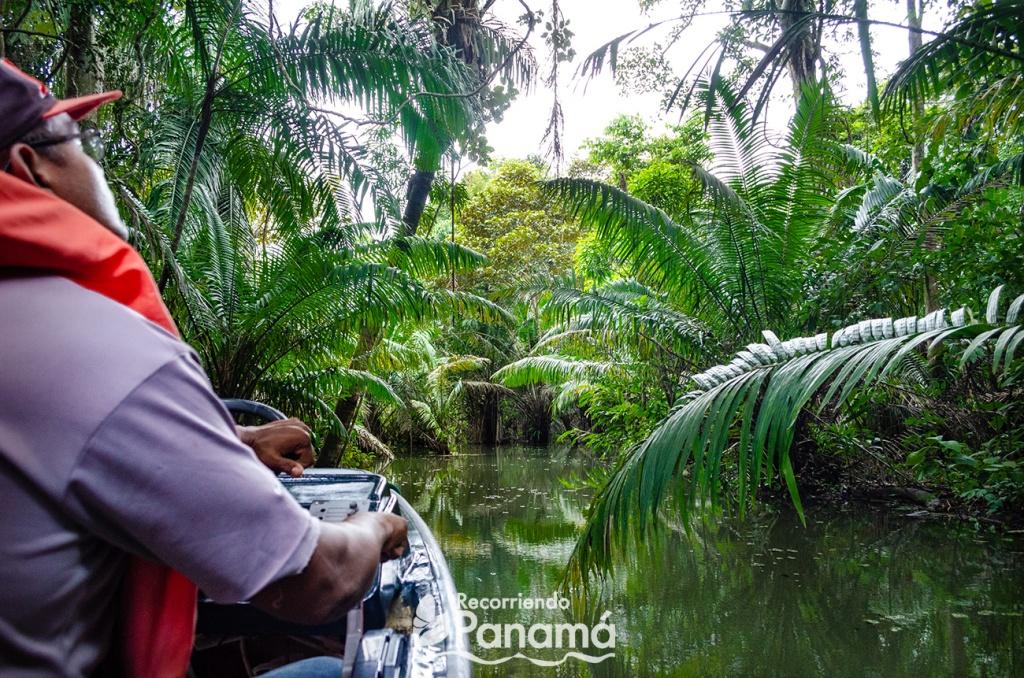Safari por el Canal de Panamá