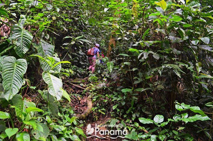 cerro-trinidad--ascenso