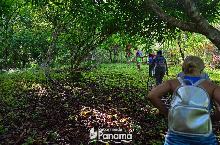 cerro-trinidad--iniciando