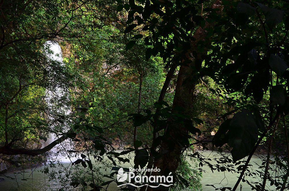 Mi primera vista de la cascada.